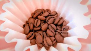 エスメラルダ農園ゲイシャのコーヒー豆