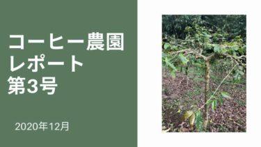 アイキャッチ コーヒー農園レポート第3号
